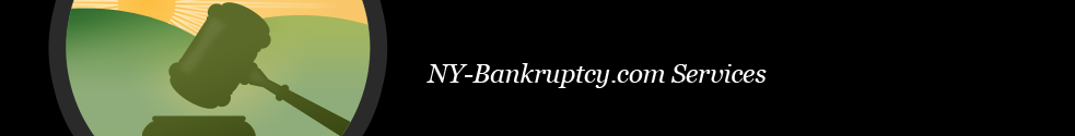Ronald D. Weiss NY Bankruptcy