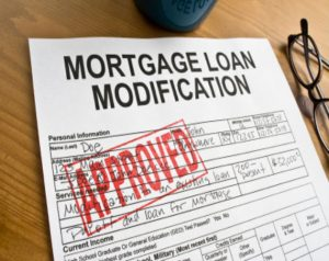 chapter 13 bankruptcy in long island